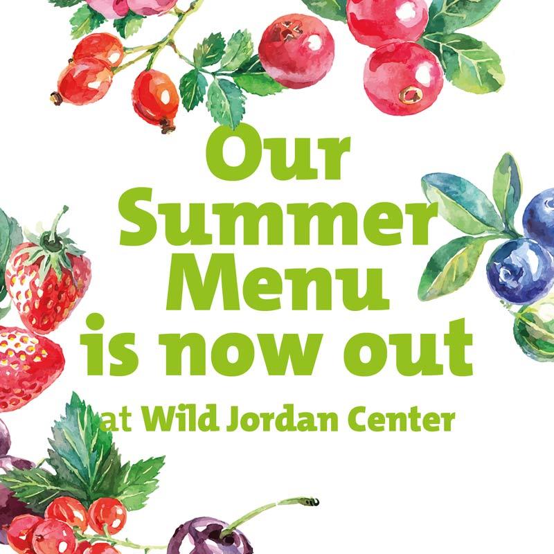 WJCSummer-menu2017